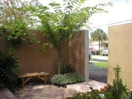 Small Home Front Entrance Courtyards Images Google Search Courtyard Ideas Small House Desert Homes Courtyard