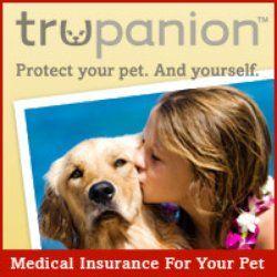 Trupanion Pet Insurance Ballard Seattle Wa Yelp Pet Insurance Quotes Pet Insurance Your Dog