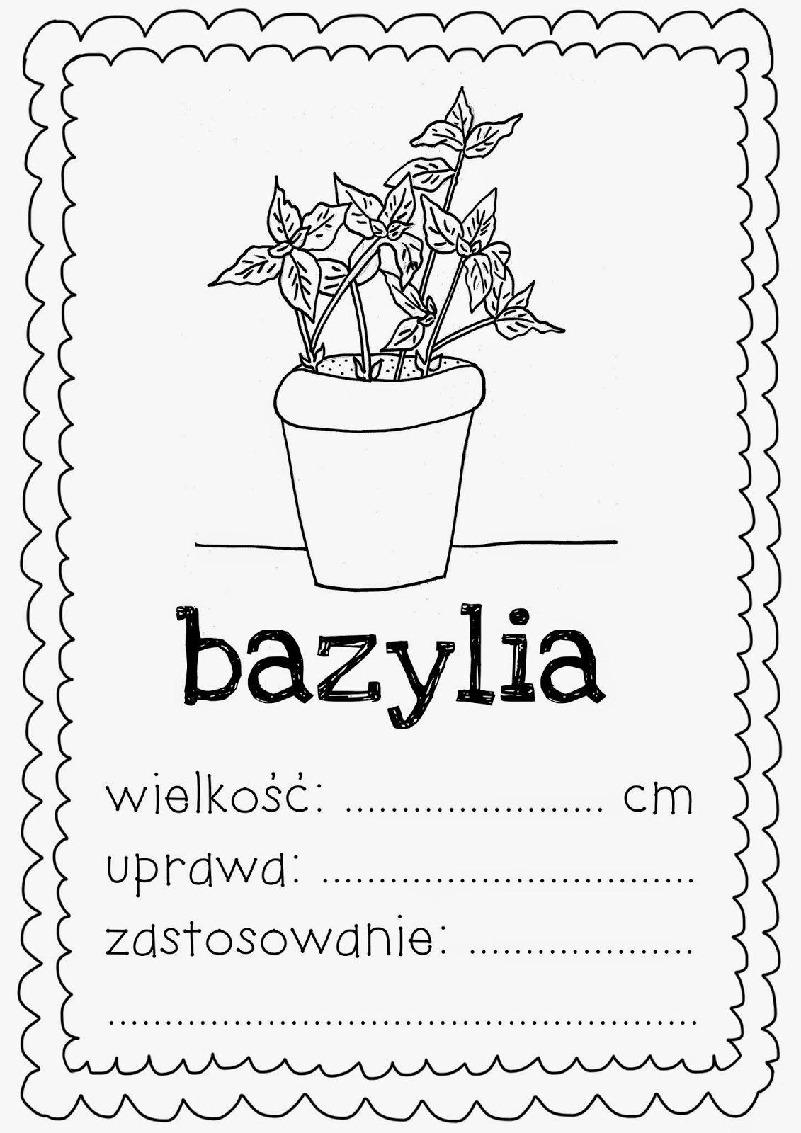 Znalezione Obrazy Dla Zapytania Ziola Kolorowanki Words Home Decor Decals Word Search Puzzle