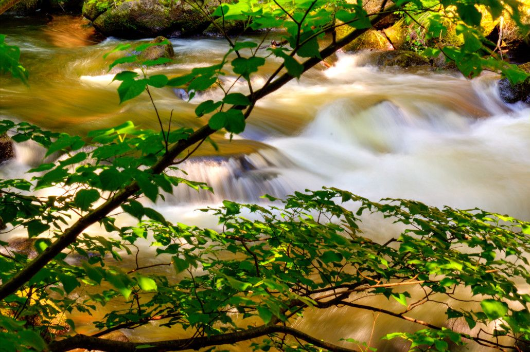 Im Bodetal bei Thale - Pictures of Germany