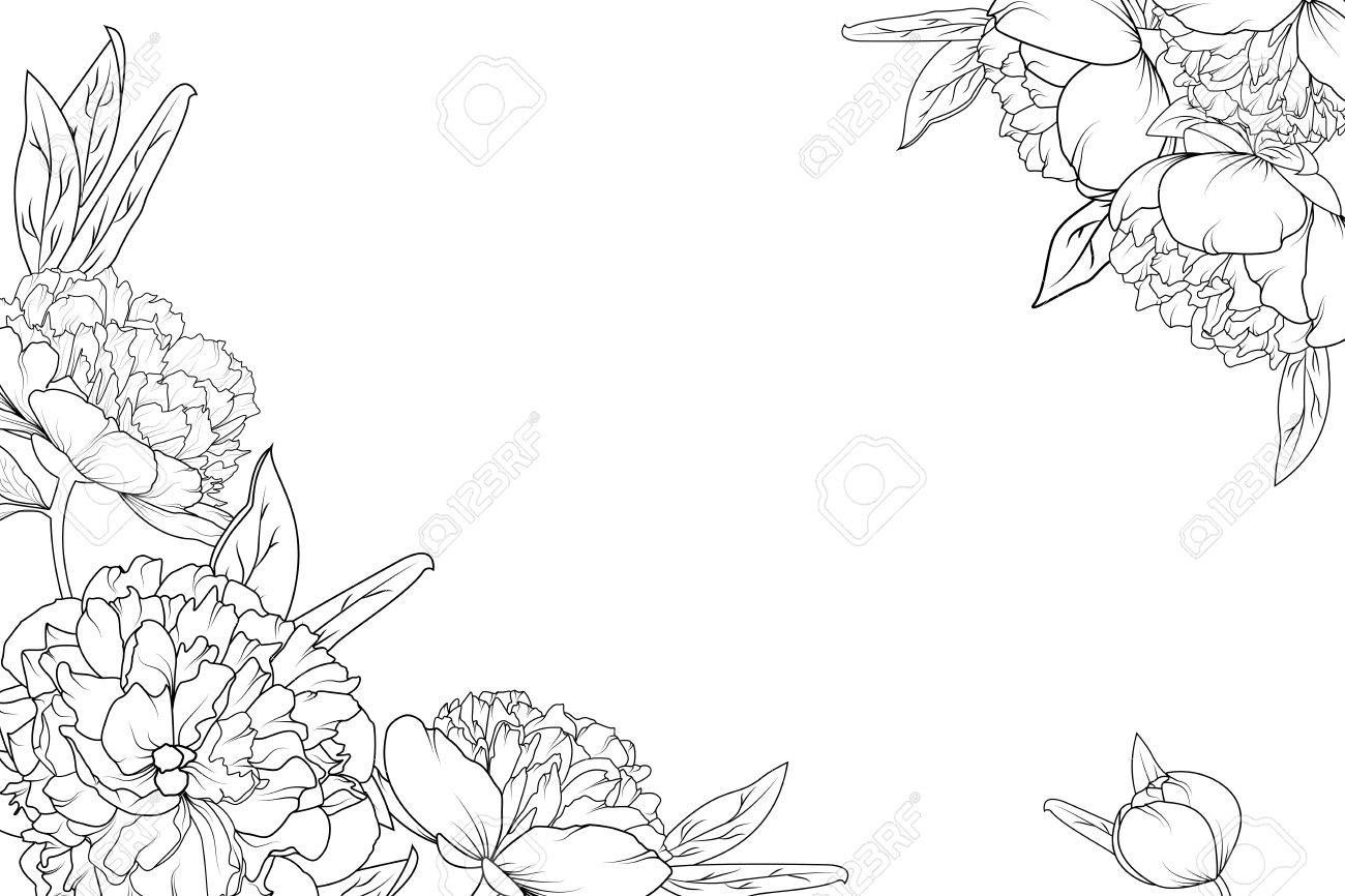 Best Of Flower Outline Border Template And Description In 2020 Outline Drawings Flower Outline Roses Drawing