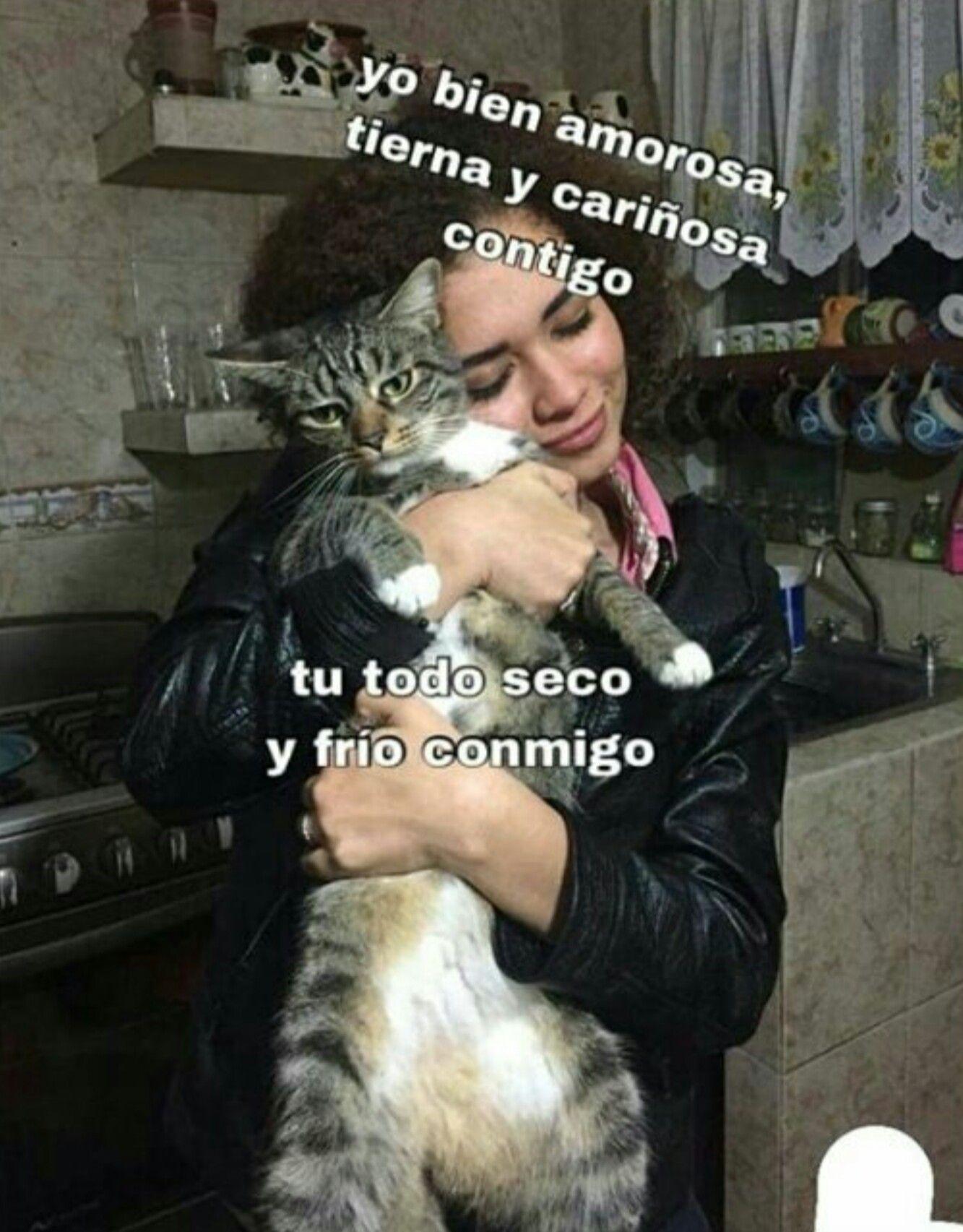 Pin By Patata Cosmica On Jasjaajajaj Cute Love Memes Funny Spanish Memes Cute Memes