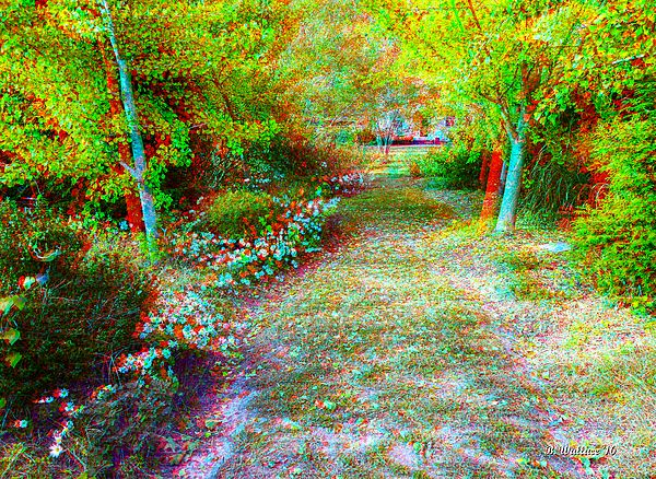 A Fall garden in the Eastern Shore Town of Easton Maryland. A pathway toward the house is lined on each side with Flowering plants even in mid-November. The fall colors mix with the green shrubbery and many blossoms to create a small paradise sanctuary.  This image is a 3D Stereo Anaglyph which requires Red/Cyan filtered 3D glasses for viewing depth. This type of 3D glasses are inexpensive and can be found online. I recommend, Rainbow Symphony or American Paper Optics.