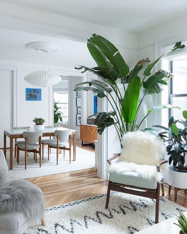Interior Love From Brooklyn! @wendy_j_li's Swoonworthy