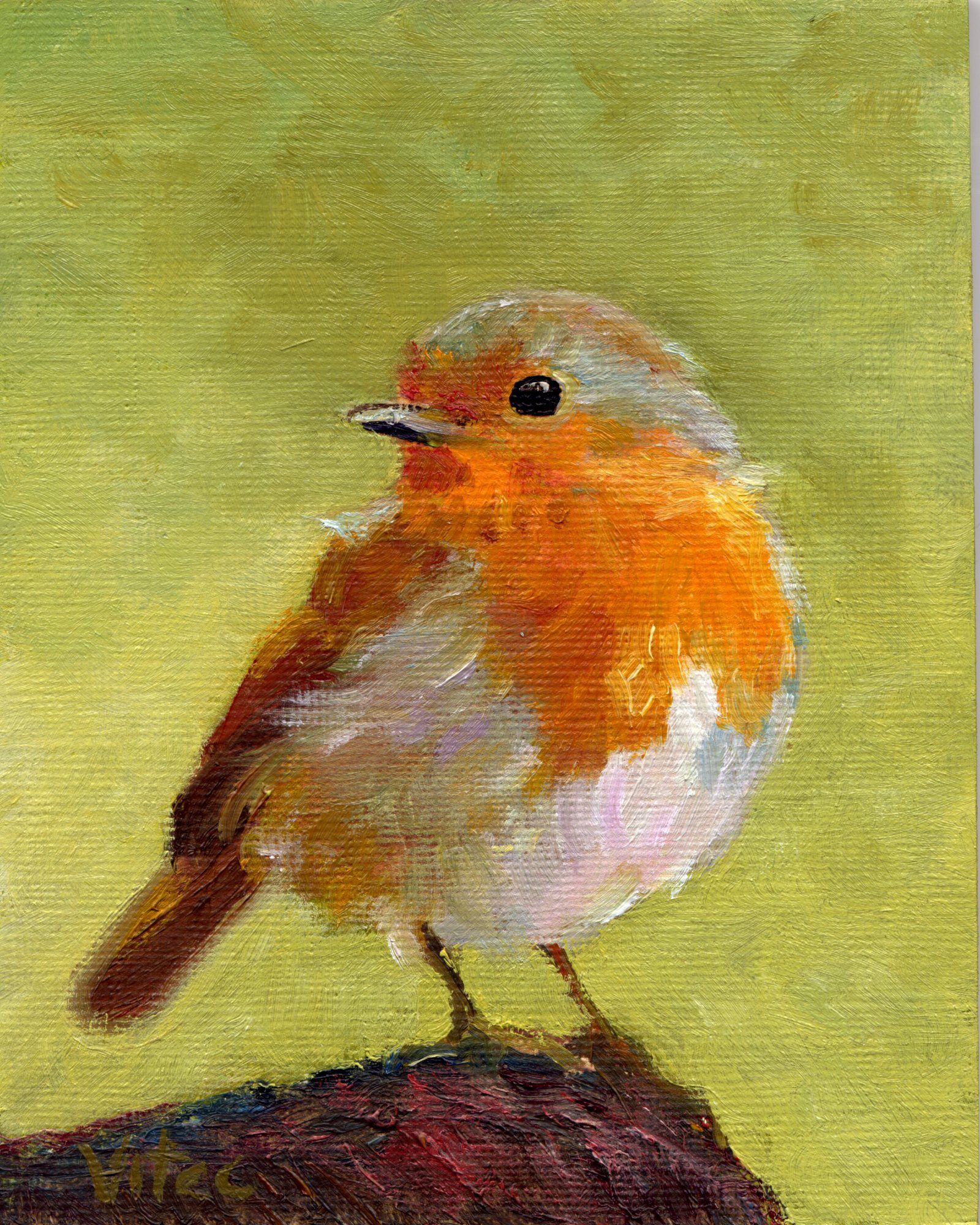 Junco Bird Art Print of Original Acrylic Painting Oregon  |Bird Painting Acrylic
