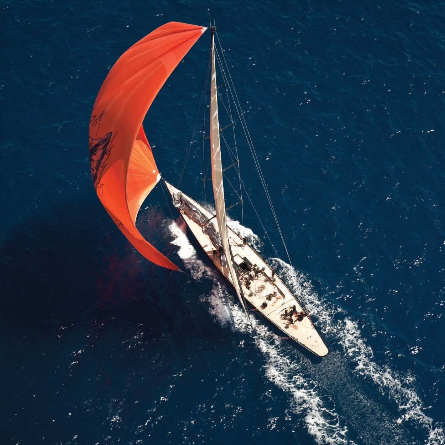 F-Class Yacht Firefly
