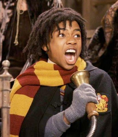 Invincible Lee Jordan Harry Potter Characters Harry Potter Cast Hard Harry Potter Trivia