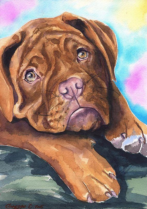 Dogue De Bordeaux Puppy Watercolor Print Of The Original Painting Art Cute Sweet Dog Decor Bordeaux Mastiff French Mastif Watercolor Dog Dog Art Dog Paintings