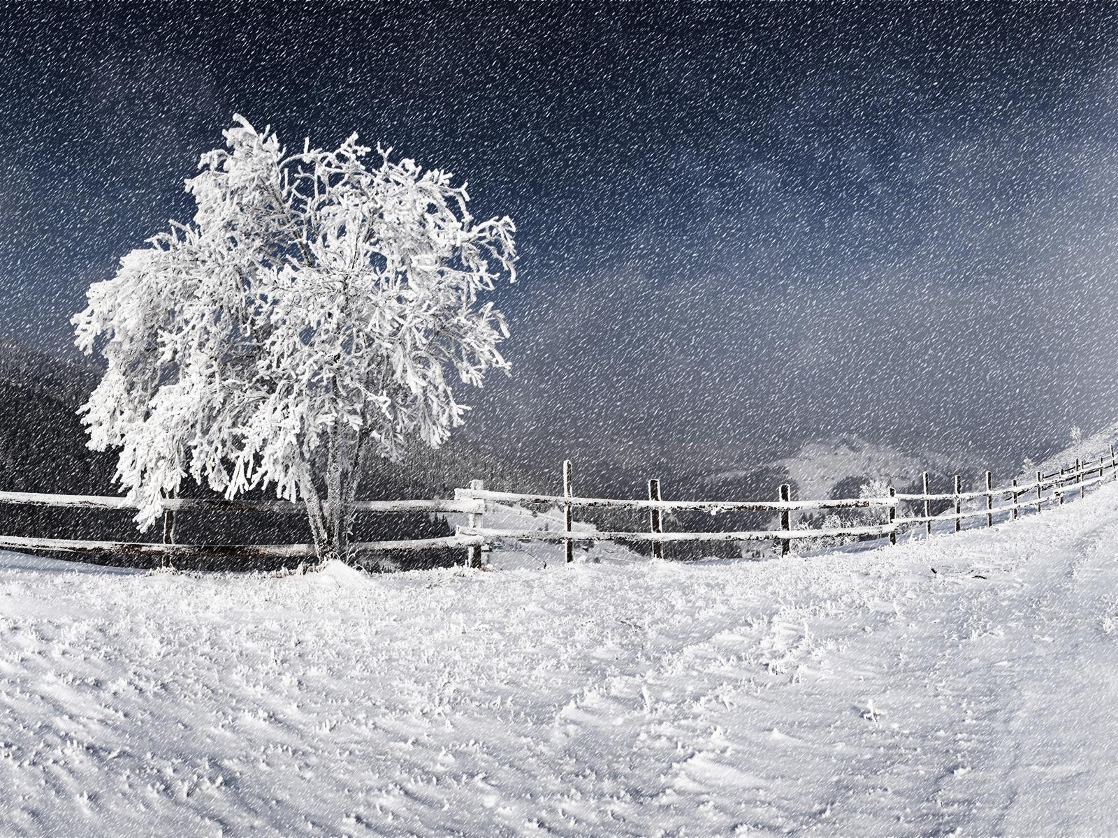 Western Snow Storm Wallpaper Storm Wallpaper Snow Images Snowfall Wallpaper