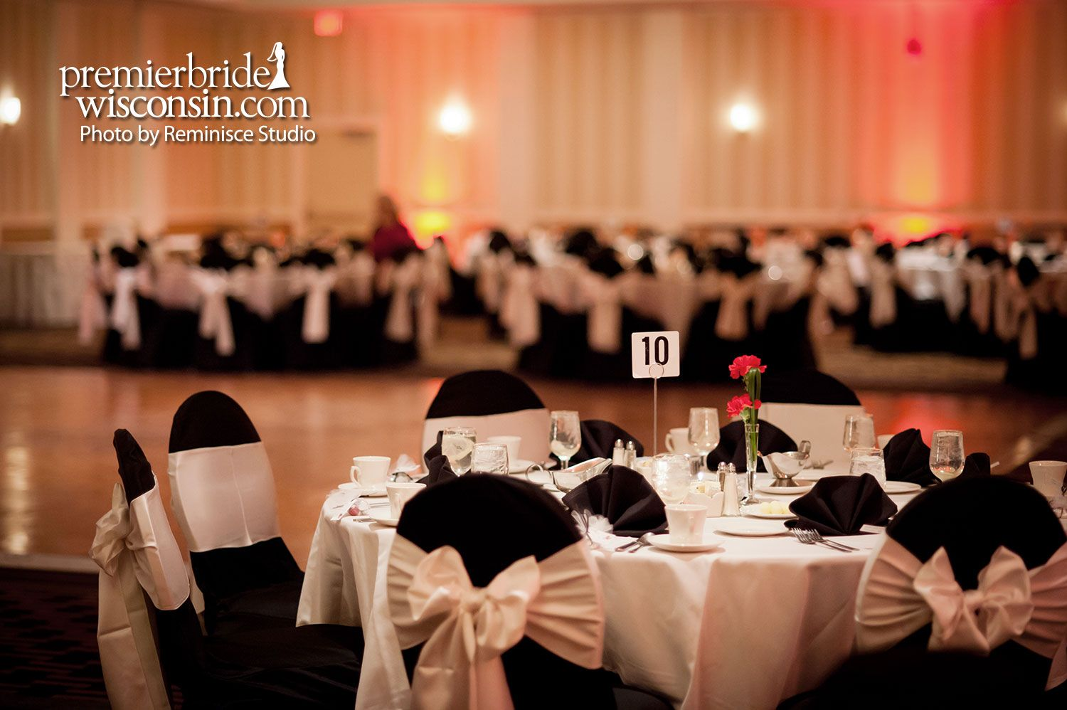 Brookfield Wedding Venues/ Wedding reception at the Brookfield,WI ...