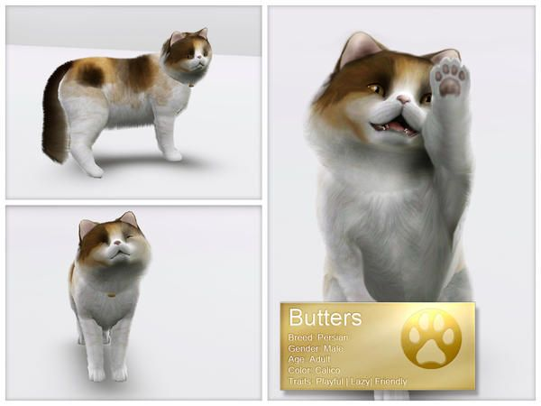 Luckyfortune S Persian Cat Butters Sims Pets Sims 4 Pets Sims 2 Pets