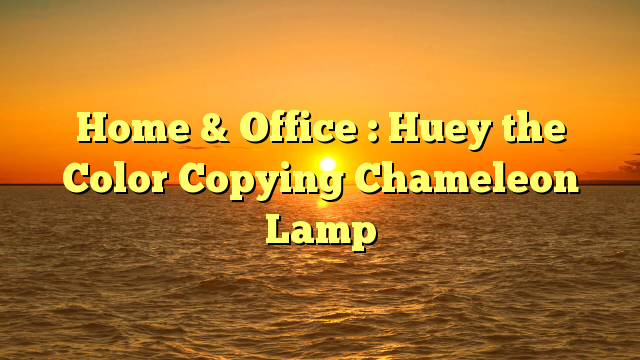 Home & Office : Huey the Color Copying Chameleon Lamp - http ...