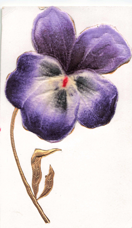 Postcard purple flower embossed purple flowers postcard