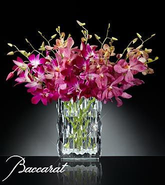 Blushing Sentiments Orchid Bouquet In Baccarat Crystal Vase He