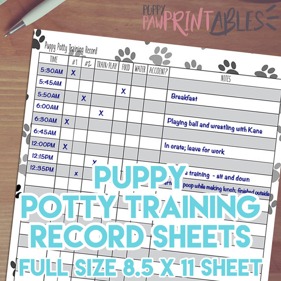 Printable Puppy Potty Training Record! Instant Download, 8