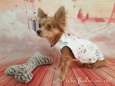 Freebook / Tutorial / Schnittmuster - Jacke für Hunde