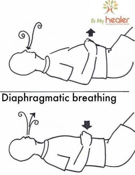 Diaphragmatic Breathing For The Core Muscles Pinterest