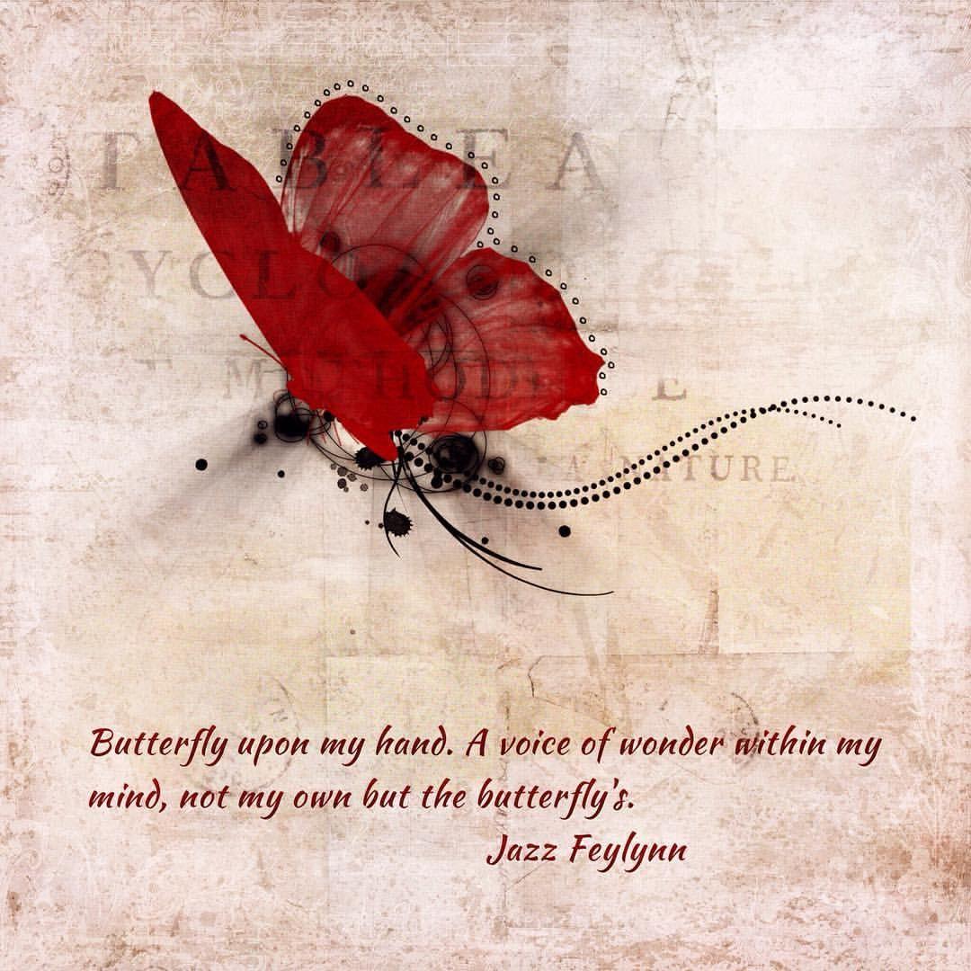 Wonder #digitalcollage #wonder #procreate #titlefx #stackablesapp #deviantscrap #kpertiet #amandarockwell #ig_artistry #creativeflow_graphics #butterflies