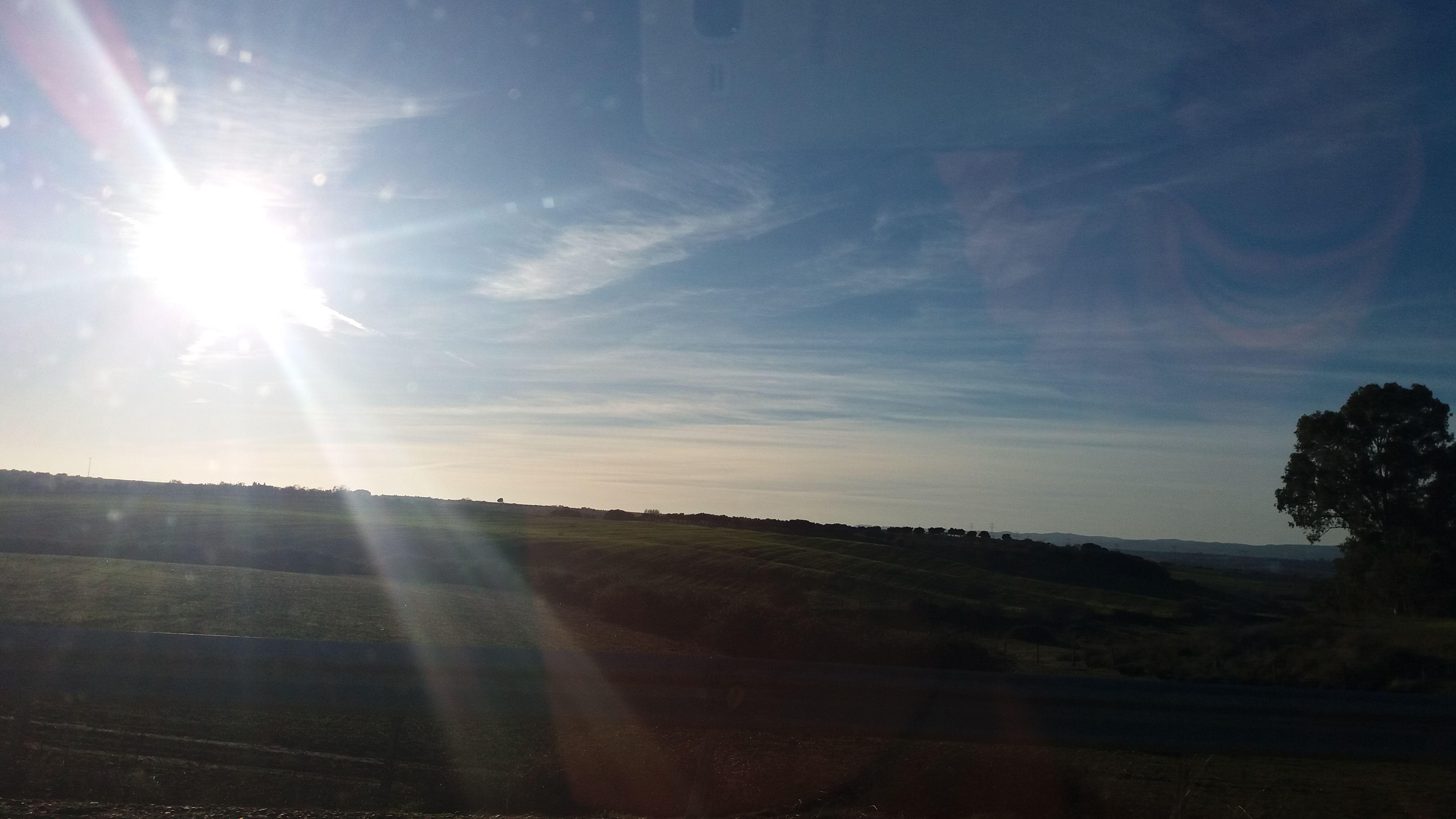 Cardiel de Los Montes (Toledo) - On the road (En el camino)