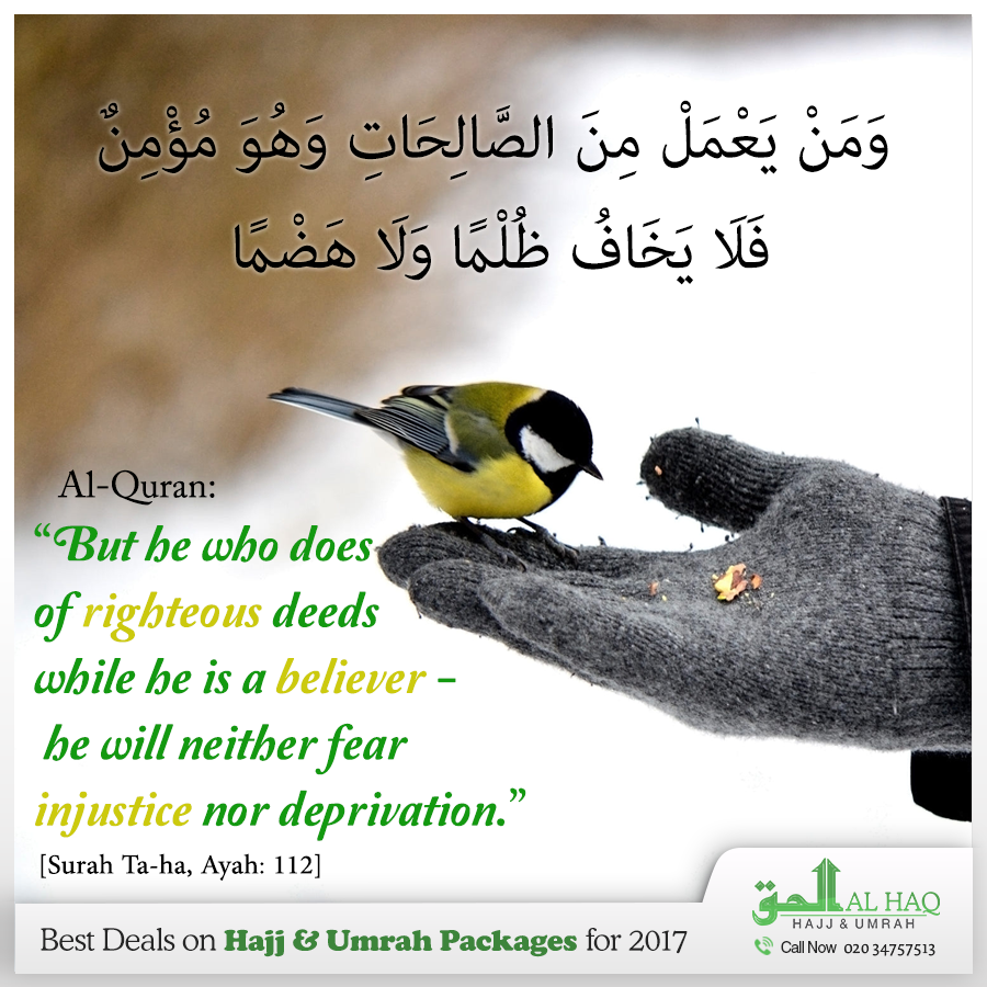 Never Loss Trust In The Greatness Of Allah و م ن ي ع م ل م ن الص ال ح ات و ه و م ؤ م ن ف ل ا ي خ اف Islamic Quotes Quran Quotes Prayer For The Day
