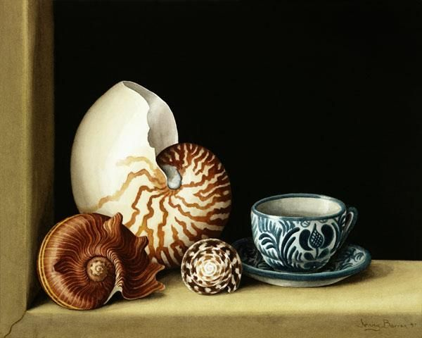 Barron, Jenny  : Still life with Nautilus, ...