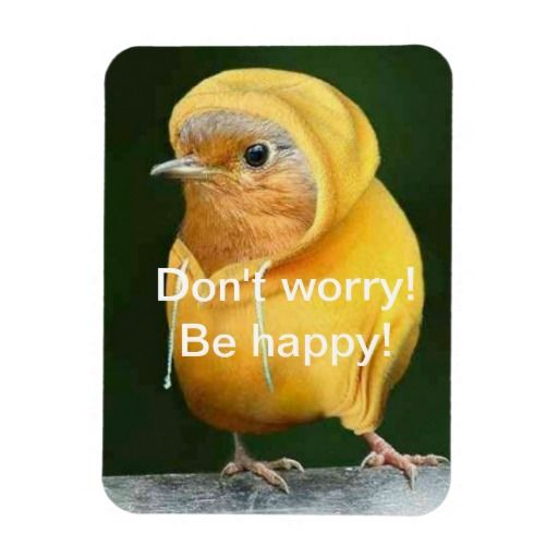 Don't worry! Be Happy Premium Flexi Magnet lowest price for you. In addition you can compare price with another store and read helpful reviews. BuyDiscount Deals          Don't worry! Be Happy Premium Flexi Magnet lowest price Fast Shipping and save your money Now!!...