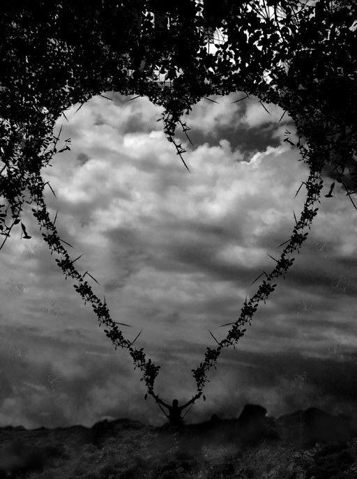 Lamour Et Un Noble Coeur Ne Font Quun Et Quand Lun Ose