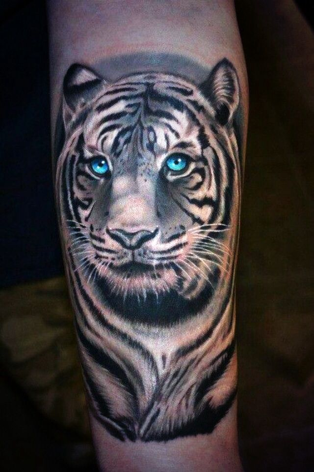 Look At Those Eyes White Tigers Tattoos Tiger Tattoo Cool Tattoos