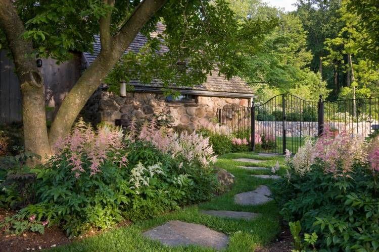 Plantes d\'ombre pour le jardin en 25 photos fascinantes!