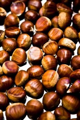 eaa184e4379b71e5a12c59de1b092a83 - How To Get Macadamia Nuts Out Of Their Shells