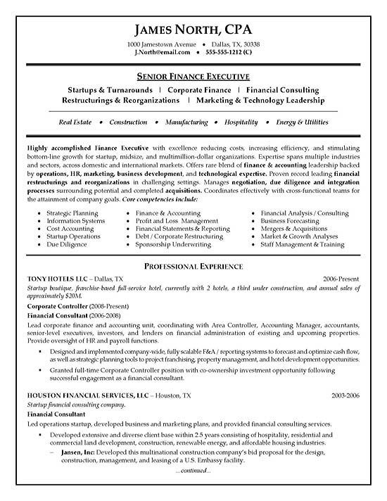High Quality Financial Consultant Resume Example