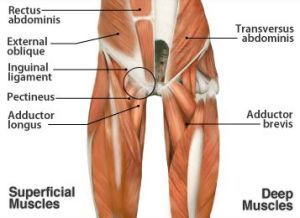 Sports hernia? Check out this blog from one of the