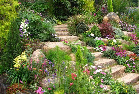 jardin de rocaille avec escalier | Devant maison | Escaleras jardín ...