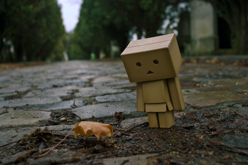 Sad Robot Watching Leaf HD Wallpaper