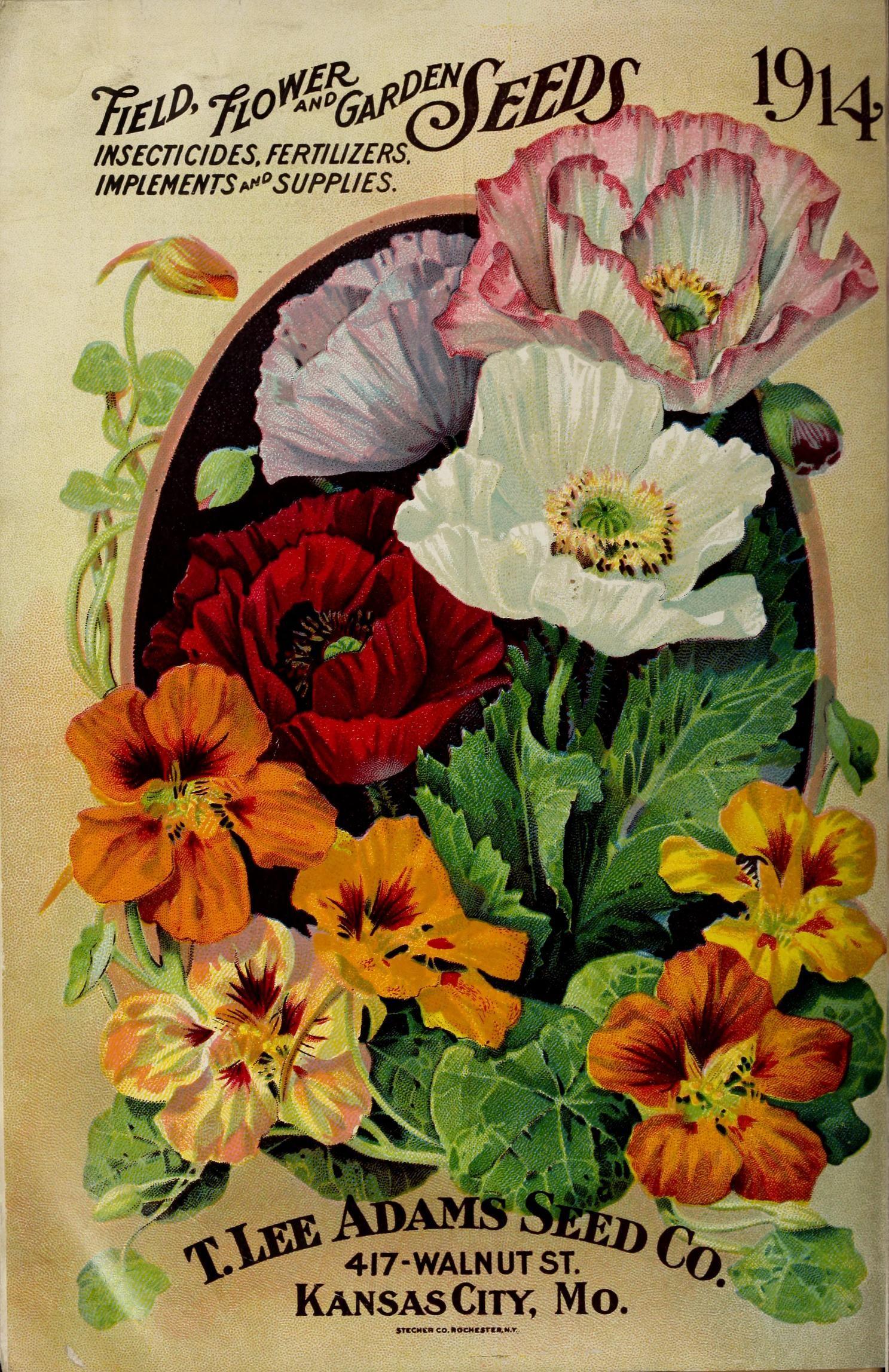 1914 adams seed book biodiversity heritage library