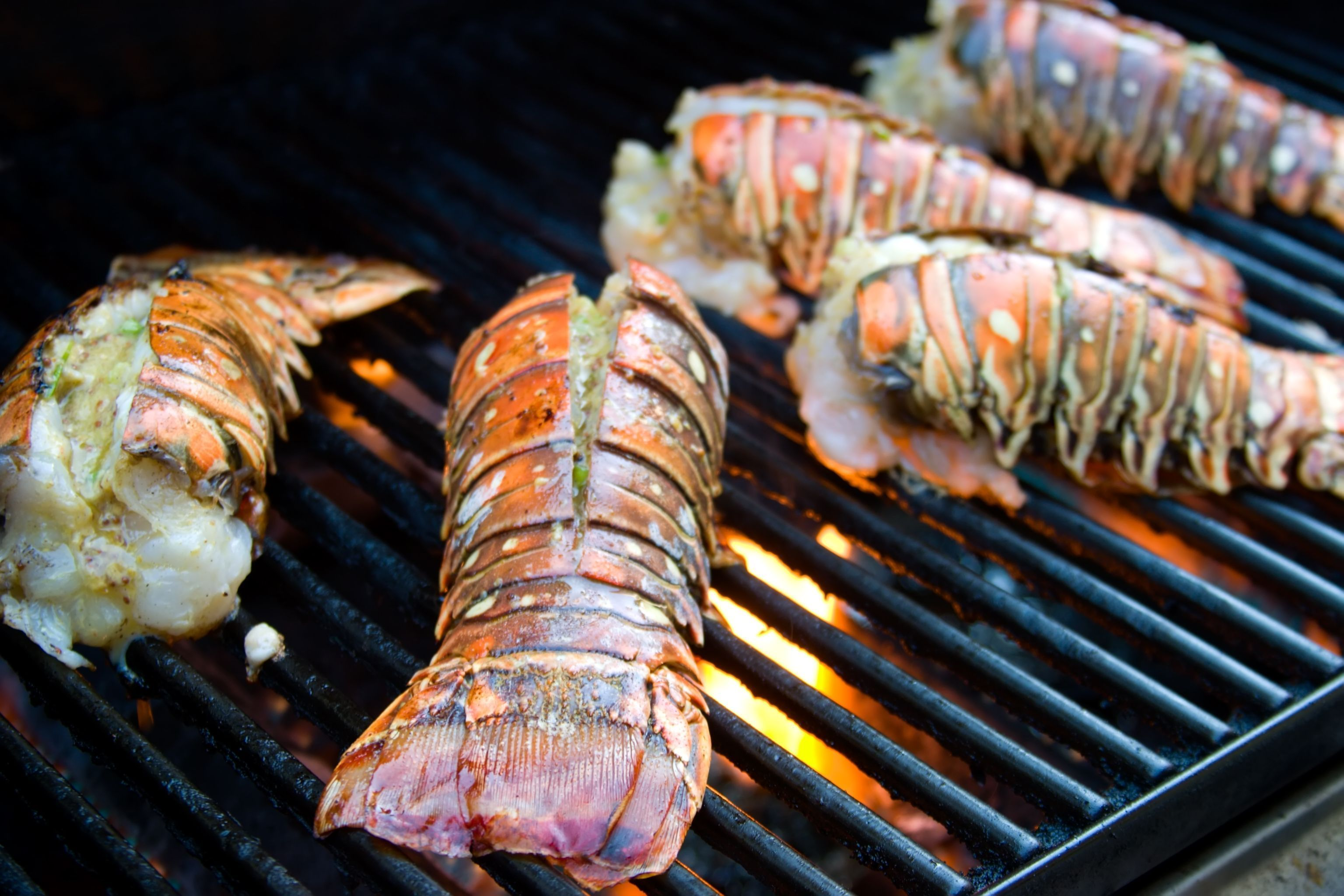 How to BBQ a Lobster Tail | eHow.com #lobstertail How to BBQ a Lobster Tail | eHow.com #lobstertail How to BBQ a Lobster Tail | eHow.com #lobstertail How to BBQ a Lobster Tail | eHow.com #lobstertail