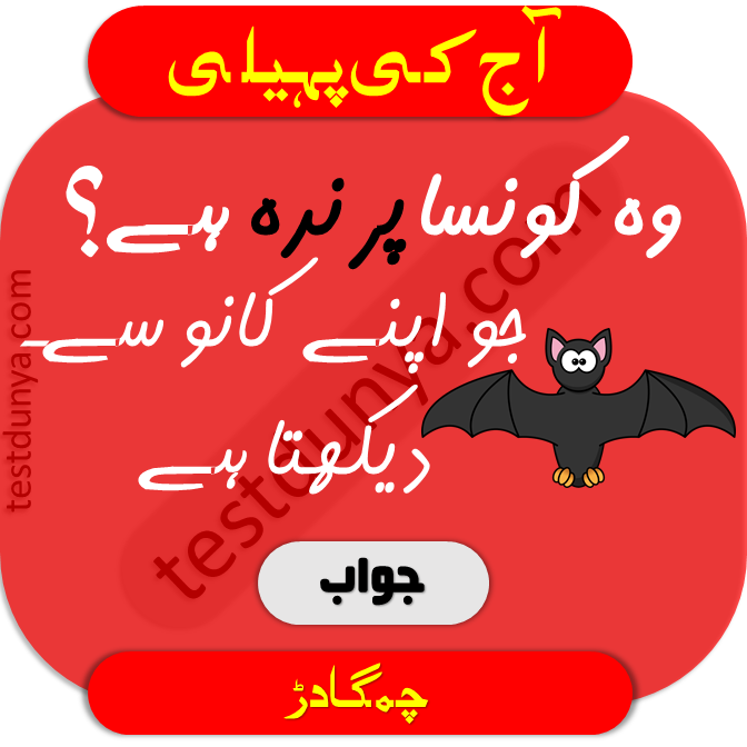 Riddles in Urdu for Kids with Answers 2020 TestDunya in