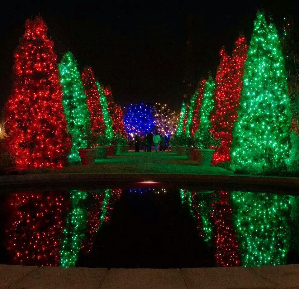 Christmas Events Blossom of Lights Denver Botanic