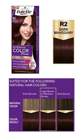 Palette couleur cheveux aubergine