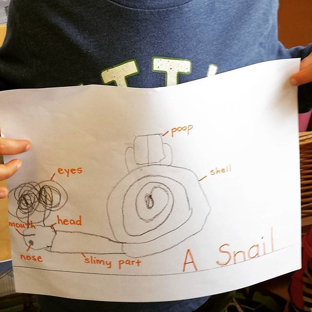 Scribed This Jks Observational Diagram Of A Snail With Labels