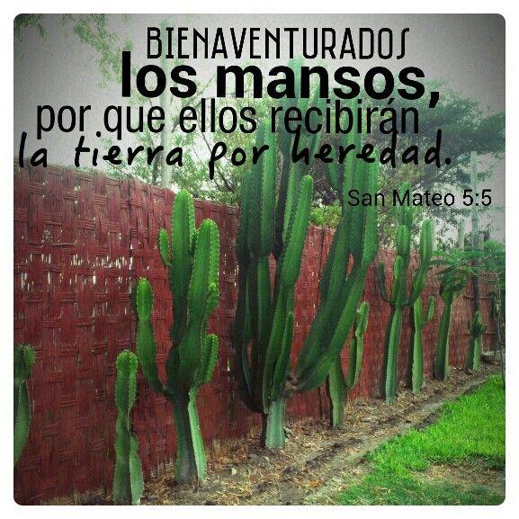 Versiculos De La Biblia De Animo: Bienaventuranzas, Pinturas Y