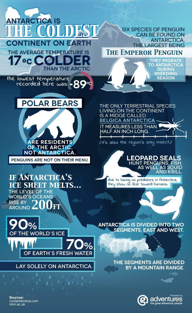 Antarctica Fun Facts [INFOGRAPHIC] Antarctica, Fun facts