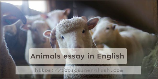 Httpstopicsinenglishcomanimalsessayinenglish  Topics In  Httpstopicsinenglishcomanimalsessayinenglish