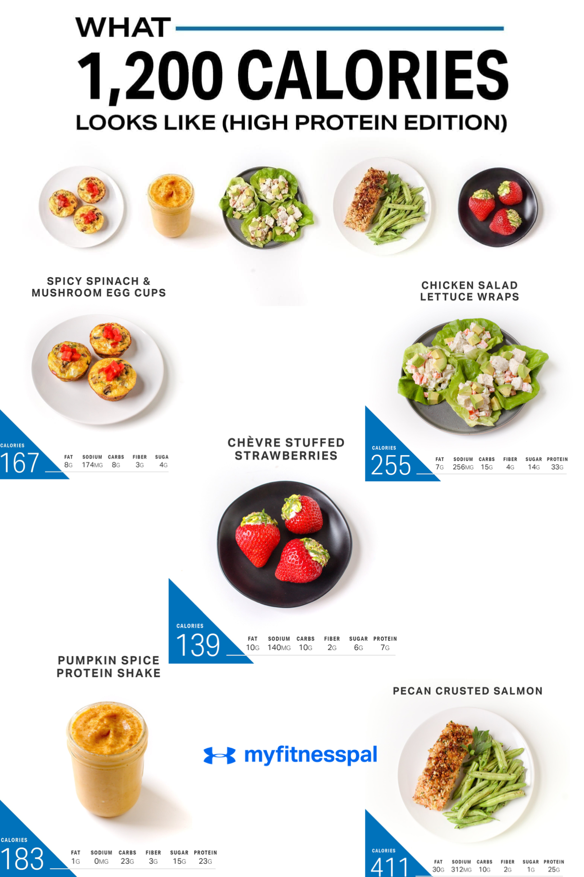 What 1,200 Calories Looks Like (Protein Edition) 1200