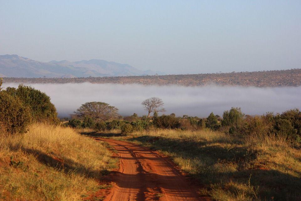 Dépaysement Garanti Avec Le Kunstenfestivaldesarts Votre: Des Vacances Au Kenya, Pour Un Dépaysement Total Au Pays