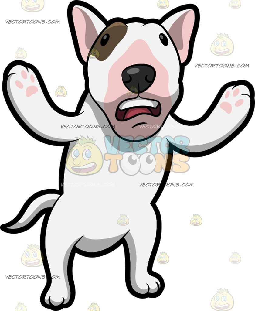 Wonderful Fur Brown Adorable Dog - eaa6ff00f9e1acbd18d8331cafca066c  Pictures_909941  .jpg