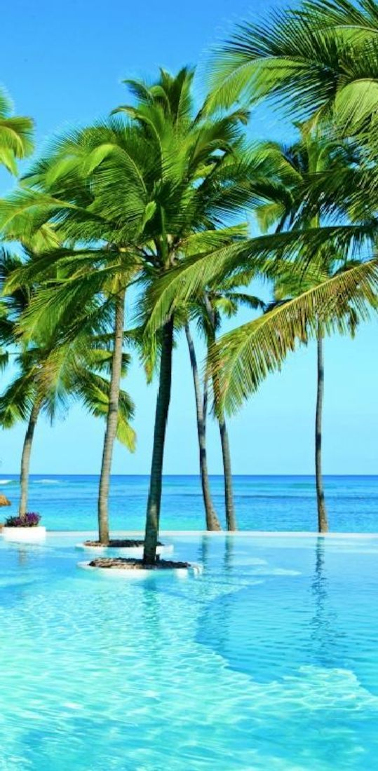Pic Of The Day Ala Punta Cana Beach Tropics Paradise Caribbean Mexico Beaches Trav Beach Paradise Beautiful Beaches Beautiful Places