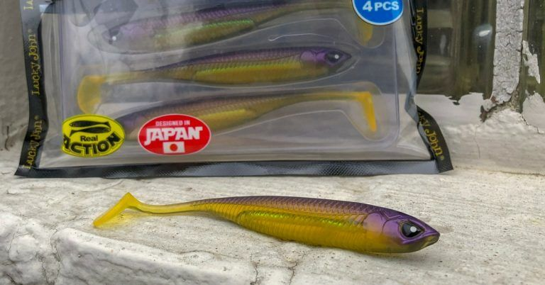 Paddle Tail Swimbaits When Where And How To Rig Them Fishing Rigs Paddle Bass Fishing