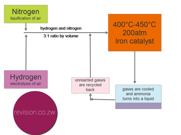 The Haber Process Revision Notes Nitrogen Ammonia