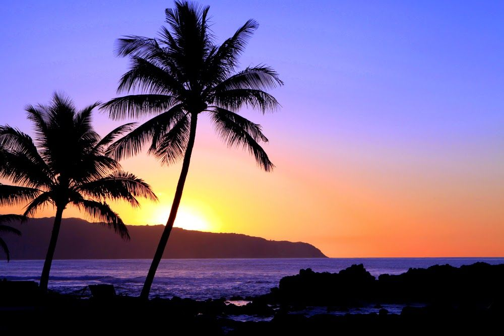 Imagine a Destination Wedding in gorgeous Fiji!